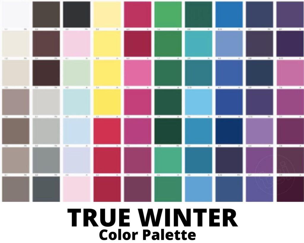 true winter color palette